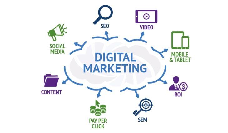 Digital Marketing Courses in Chandigarh