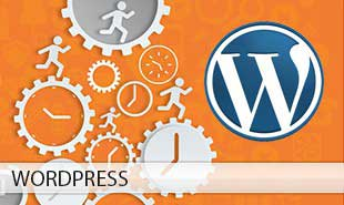 Best Wordpress Training Institute Chandigarh