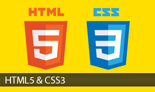 HTML5 & CSS3 Course in Chandigarh